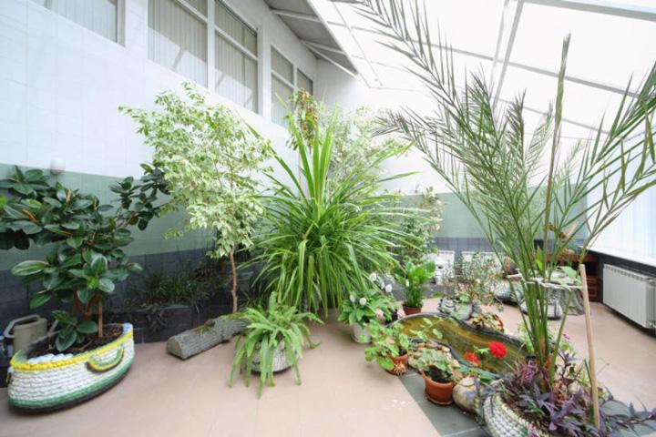 Moderná zimná záhrada